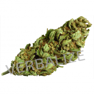 lemon power verbalize marijuana light 324x324 - Lemon Power - 3gr - Verbalize novita, infiorescenze, cannabis-light