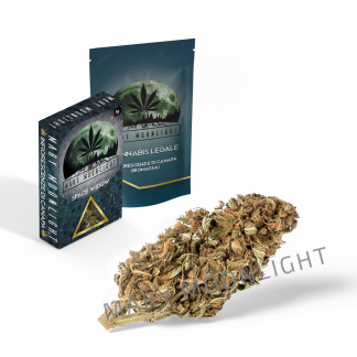space widow cannabis cbd 324x324 - Space Widow - 3gr - Mary Moonlight novita, infiorescenze, cannabis-light