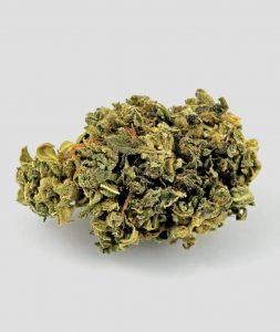 blumegic cannabis 253x300 - blumegic cannabis