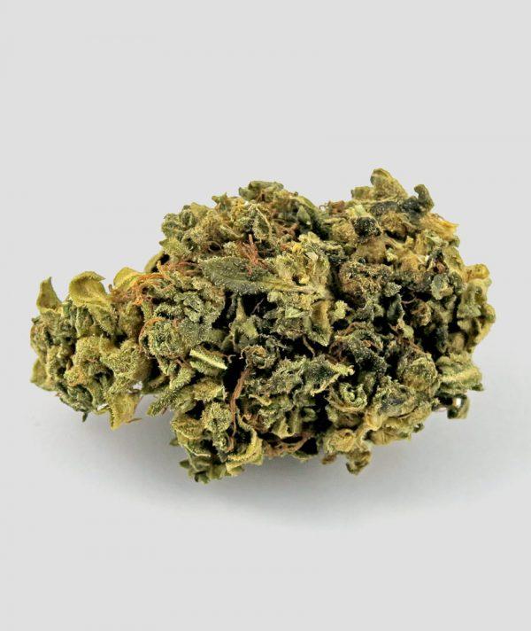 blumegic cannabis 600x712 - Blue Magic - 3gr - Flower Farm cannabis-legale, fino-a-3-gr, cannabis-light
