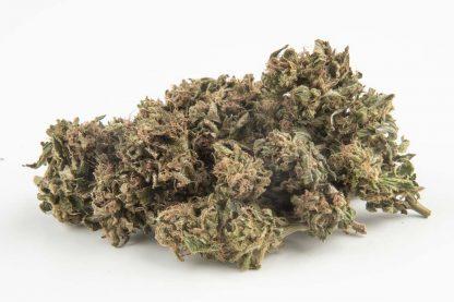 gransasso kush fiori di canapa cbd hemp farm italia 1200x800 416x277 - GranSasso Kush - 5gr - Hemp Farm Italia novita, infiorescenze, cannabis-light