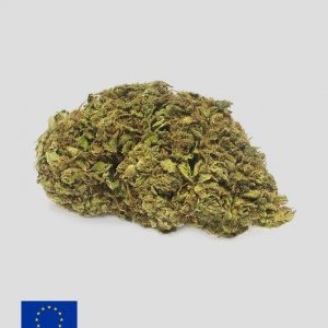 jack herer cannabis light 300x300 - FLOWER FARM