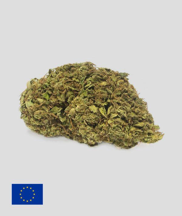 jack herer cannabis light 600x712 - Jack Herer - 10gr - Flower Farm formati-maxi, cannabis-legale, cannabis-light