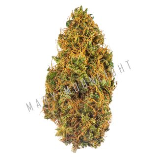 moon cherry 324x324 - Moon Cherry - 3gr - Mary Moonlight novita, infiorescenze, cannabis-light