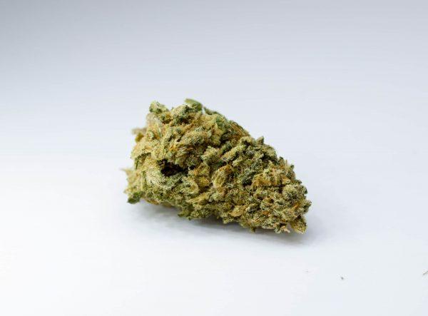 1 cannabis light 600x443 - #1 CBD - 5gr - CBweed formati-maxi, cannabis-legale, cannabis-light