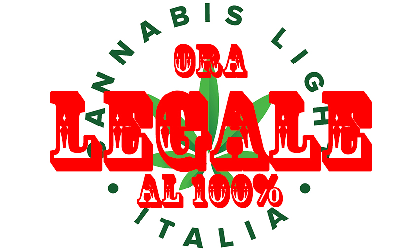 emendamento cannabis legale - Cannabis light, ora legale al 100% in Italia informazioni, cannabis-light