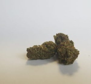 top quality 300x278 - Maria Salvador - Top Quality - 3gr - by J-Ax cannabis-legale, fino-a-3-gr, cannabis-light