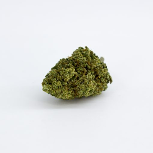 kingston cima web 1 510x510 - Kingstone CBD - 2gr - Cbweed cannabis-legale, fino-a-3-gr, cannabis-light