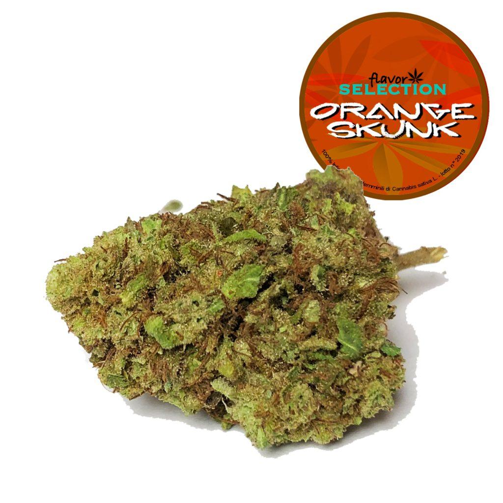 orange skunk CBD cannabis legale