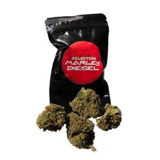 cannabis marley diesel