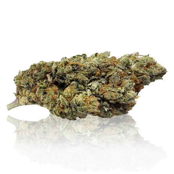 bud candy - Bud Candy - 1gr - CannaBe cannabis-legale, fino-a-3-gr, cannabis-light
