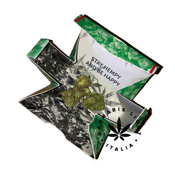 cannabis bloom