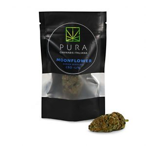 cannabis legale moonflower pura cbd 300x300 - TERRE DI CANNABIS