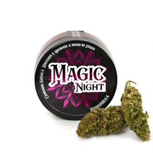 marijuana light magic night pura cbd 300x300 - TERRE DI CANNABIS