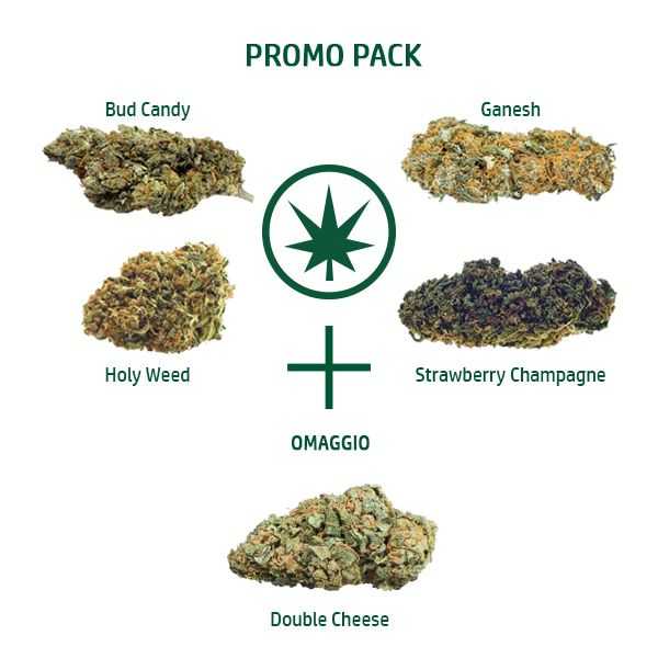 promo degusta con double cheese 50740 16255 - Cannabe 4+1 Pack - 5g - Kit Cannabis light kit-pack-promo, cannabis-light