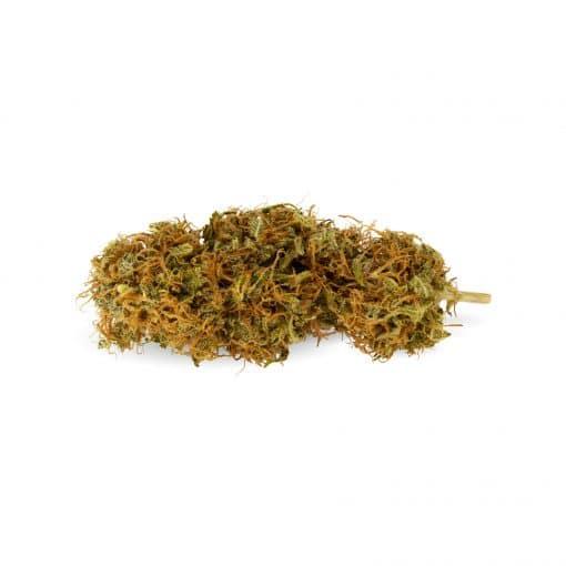 cannabis orange