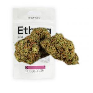 cannabis cbd bubblegum
