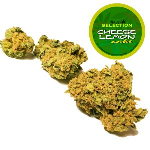 cannabis legale lemon
