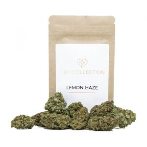 cannabis legale lemon haze