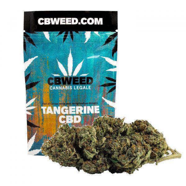 cannabis light legale tangerine cbd cbweed