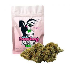 white strawberry skunk cannabis cbd green house seed