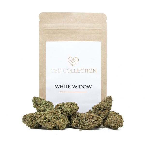 cannabis light white widow